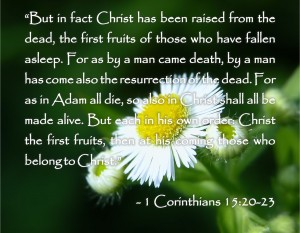 bible-quotes-and-pictures-tagalog-prayers-and-christian-quotes-bible-quotes-about-death-1-71637